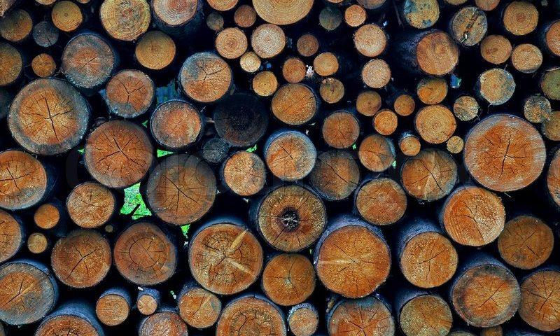 apvalios medienos